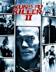 Kung Fu Killer 2 2009 Hindi Dubbed Movie Watch Online