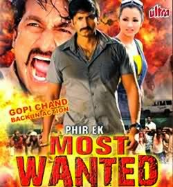 Phir Ek Most Wanted (2009)