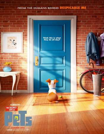 The Secret Life of Pets 2016 Dual Audio BRRip 720p